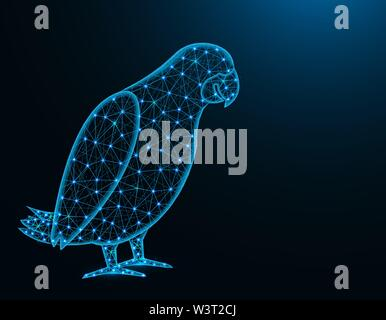 Jaco parrot low poly model, African animal abstract graphics, bird polygonal wireframe vector illustration on dark blue background - Stock Image