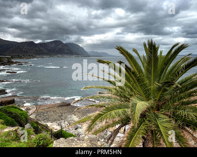 Hermanus, Western Cape, on the South Atlantic coat, south east of Cape Town, South Africa - Stock Image