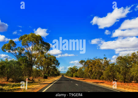Remote empty B55 highway in remote rural outback of NSW state in Australia on a hot sunny day under blue sky driving between gumtree woods. - Stock Image
