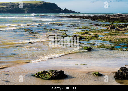 Daymer Bay beach in North Cornwall at low tide, in bright sunlight with seaweed and rockpools. - Stock Image