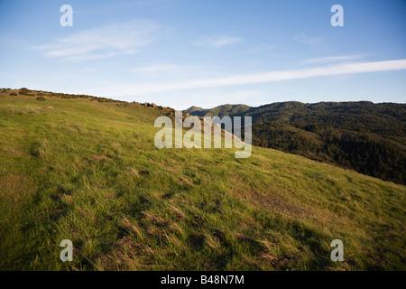 Grassland along Fairfax Bolinas Road Marin County California - Stock Image
