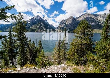 USA, Wyoming, Jenny lake before the Teton range in the Grand Teton National Park - Stock Image