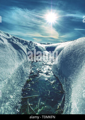Snowy frozen grass in snow in winter. During winter snow melt and rural fields - Stock Image