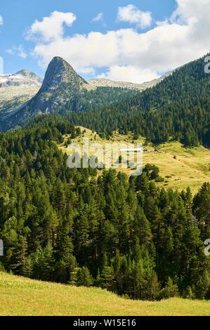 Borda and Pinar del Clot pine forest near GR-11 footpath with Puntal de Barrau peak in Viadós (Chistau valley, Sobrarbe, Huesca,Pyrenees,Aragon,Spain) - Stock Image