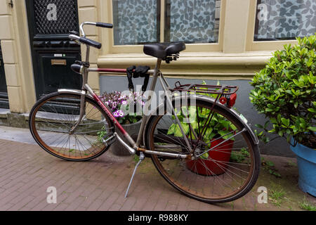 Dutch bicycles parked in front of residential building, Amsterdam, Netherlands - Stock Image