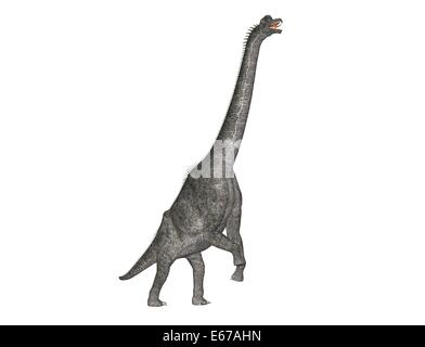 Dinosaurier Brachiosaurus / dinosaur Brachiosaurus - Stock Image