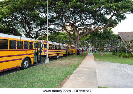 Chartered school buses parked on roadside waiting to load, Kahala, Honolulu, Oahu, Hawaii, USA - Stock Image