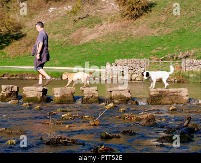 Peak District National Park, Derbyshire, UK. 10th October, 2018. UK Weather one man & two dogs crossing the stepping stones on an unusually hot sunny October day in the tourist hotspot of Dovedale in the Peak District National Park, Derbyshire Credit: Doug Blane/Alamy Live News - Stock Image