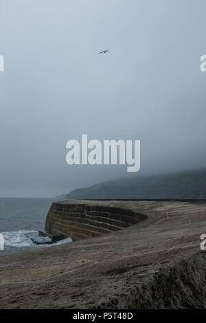 Dramatic stormy misty weather in Lyme Regis with waves crashing against the Cobb Harbour Wall and Seagull flying against the winds, Dorset, England. - Stock Image