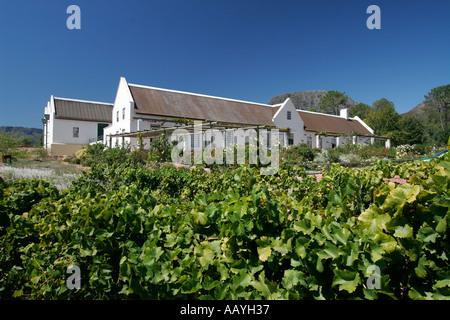 south africa wine region Suider Paarl Avondale wine  - Stock Image