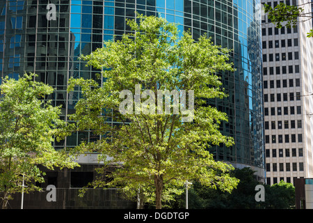 Office buildings on Wells Fargo Plaza Houston Texas - Stock Image