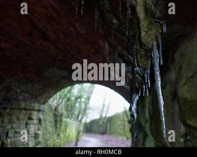 Wirksworth, Derbyshire Dales, UK. 31st January, 2019. UK Weather: Foot long icicles dangling inside an old mining incline railway bridge on a very cold winter day, The National Stone Centre, Wirksworth, Derbyshire Dales Credit: Doug Blane/Alamy Live News - Stock Image