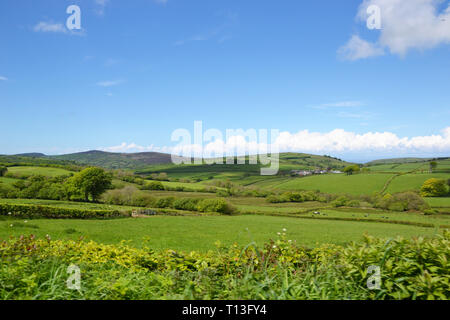 The Devon landscape near Arlington, Devon, UK - Stock Image