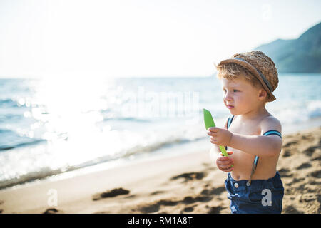 A small toddler boy with hat and shorts standing on beach on summer holiday. Copy space. - Stock Image