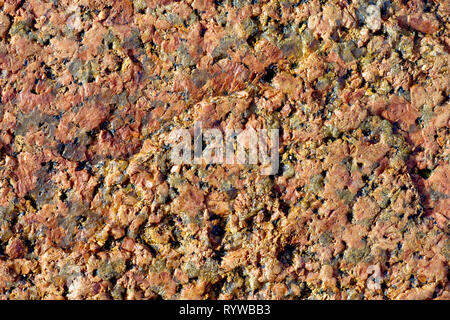 Close up, abstract image of the structure and pattern of a rock on the beach. - Stock Image