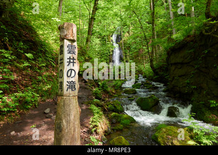 Oirase Keiryu Stream in Towada National Park, Japan. The stream walk is 14km long and features a series of currents and waterfalls. - Stock Image