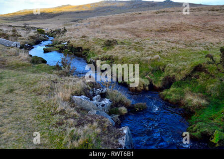 Black-a-ven Brook with running water going through marshy area, Hartor Hill on Dartmoor moor, national park, Devon, England - Stock Image