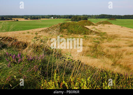 Firehøje, a row of protected Bronze Age burial mounds near Vejle, Denmark dating back to 3000 - 1000 BC. - Stock Image