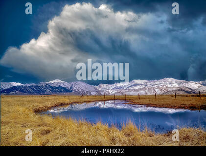 Reflecting pool of water and Eastern sierra Mountains. Near Bridgeport, California - Stock Image