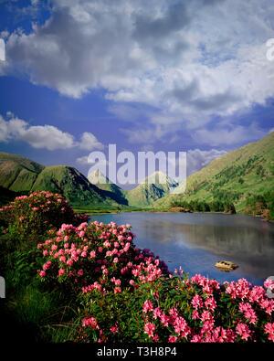 GB - SCOTLAND: Glen Etive in the Highlands - Stock Image
