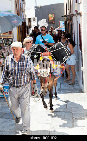 Luggage carried on a donkey in Santorini - Stock Image