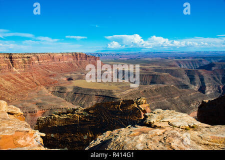 USA, Utah, Muley Point Overlook, San Juan Goosenecks, Bears Ears National Monument - Stock Image