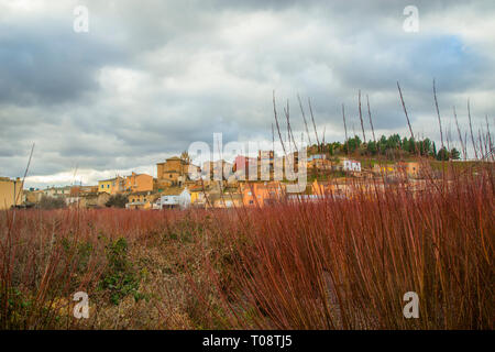 Overview and wicker field. Villaconejos de Trabaque, Cuenca province, Castilla La Mancha, Spain. - Stock Image