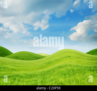Idyllic landscape with fresh green grass - Stock Image