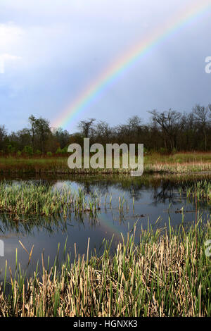 Rainbow over marsh Ohio - Stock Image