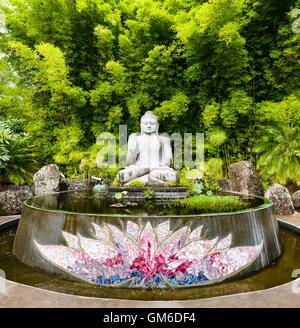 The Buddha and Lotus Pond at Crystal Castle And Shambhala Gardens, close to Byron Bay. - Stock Image