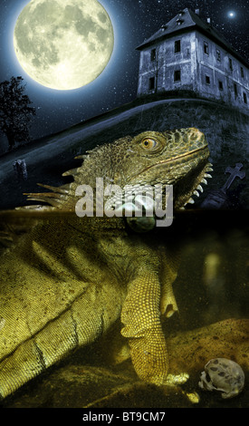 Ghostly scenery with big lizard. - Stock Image