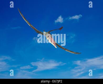 Dinosaurier Eudimorphodon / dinosaur Eudimorphodon - Stock Image