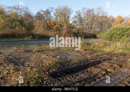 Rusty old tank tracks on Hazeley Heath in Hampshire, UK, the remains from army tank testing operations that pre-date world war 2 - Stock Image