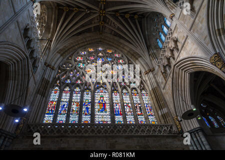The Great West Window in Exeter cathedral, which has longest uniterrupted gothic stone vaulted ceiling of any cathedral in the world. - Stock Image