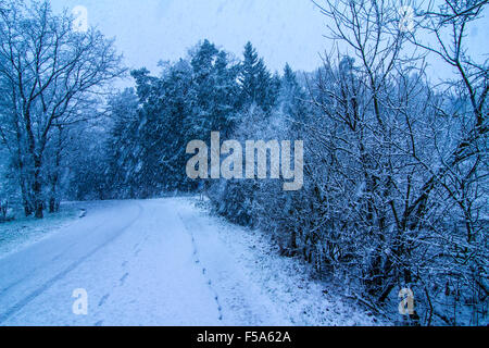 Snowy path in the south of Germany - Stock Image