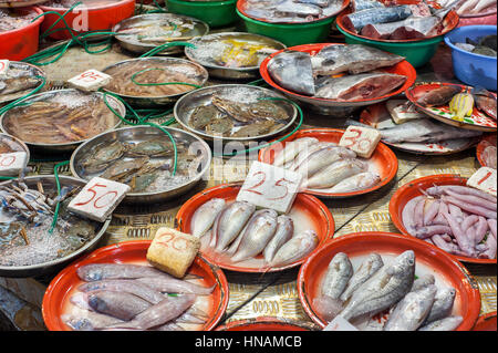 Fresh seafood on sale at a Hong Kong wet market - Stock Image