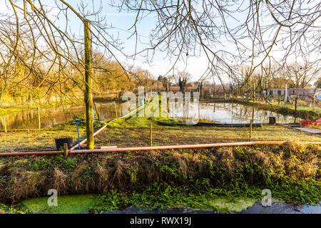 Trout farm, trout farming, trout farm ponds, pisciculture, trout ponds, fish ponds, fish farm, fish farming, trout, farm, farming, ponds, pond, farms, - Stock Image