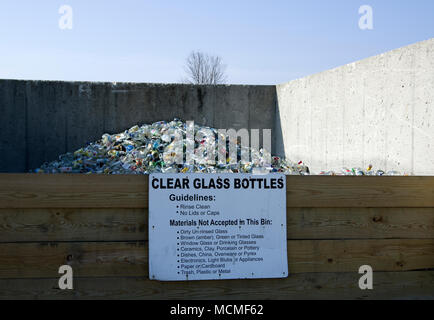 Clear glass bottles in community recycling collection bin - Stock Image