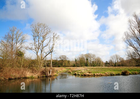 A view of marshes with canal bypassing Horstead Mill from the River Bure at Coltishall, Norfolk, England, United Kingdom, Europe. - Stock Image