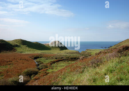 Speke's Mill valley looking towards Brownspear Point and Speke's Mill Mouth on the South West Coast Path - Stock Image