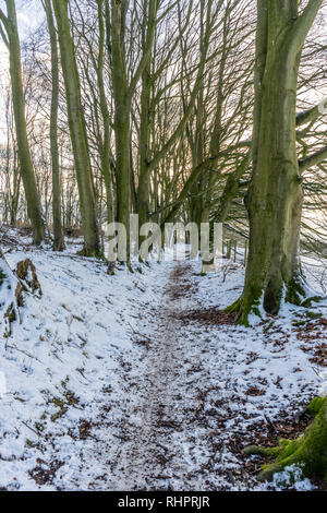 Snow covered path on the South Downs Way at Cheesefoot Head, Hampshire, England, UK - Stock Image