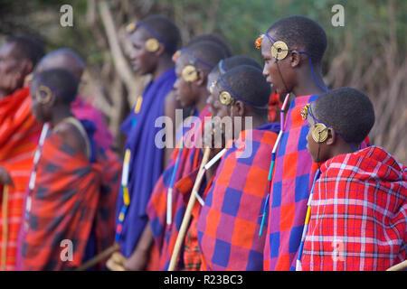 Kenya, Africa - January 2006: Young Maasi Mara initiates - Stock Image