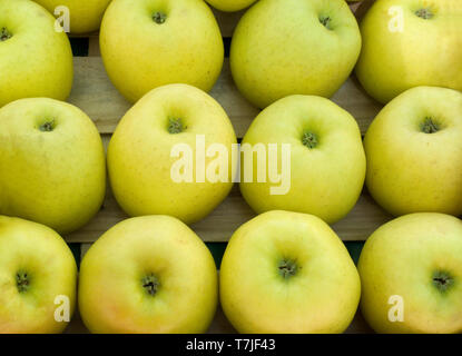 Freshly harvested Golden Delicious apples on display at the market in France - Stock Image