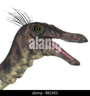 Gallimimus Dinosaur Head - Gallimimus was a omnivorous theropod dinosaur that lived in Mongolia during the Cretaceous Period. - Stock Image