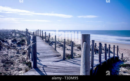 Looking down two wooden decking pathways forming a fork in the road, both heading down to a sweeping sandy beach with the blue sea and blue sky in fro - Stock Image