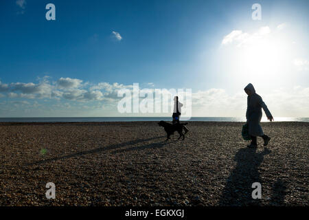 Two people walking a dog on a shingle beach on a sunny winter day with sun flare - Stock Image