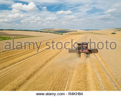 Harvest aerial of combine harvester cutting summer wheat field crop with tractor trailer under blue sky on farm - Stock Image