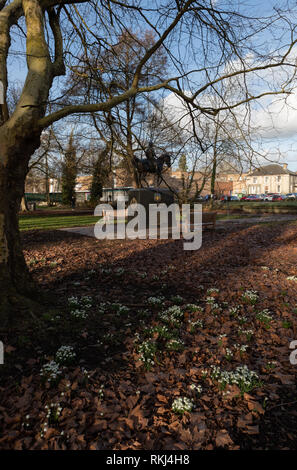 snowdrops on Butten Island, Thetford in front of Maharaja Duleep Singh statue. - Stock Image
