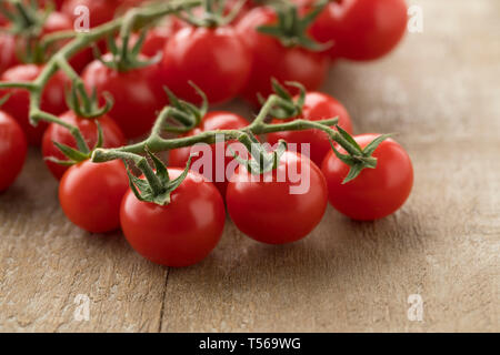 Vine with sweet red ripe cherry tomatoes on a vine - Stock Image
