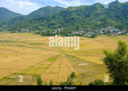 Spider web-shaped rice fields ('lingko') in Cancar Village, near Ruteng, Manggarai Regency, island of Flores (East Nussa Tenggara), Indonesia. - Stock Image
